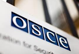 Україна надала ОБСЄ інформацію щодо наявності в бойовиків забороненої зброї