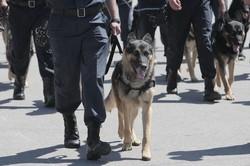 Райнін приймає парад поліцейських на площі Свободи
