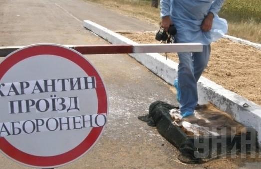 В окремих областях України були зафіксовані спалахи африканської чуми свиней