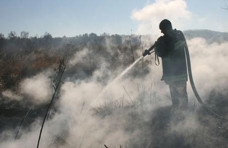 В Україні палають торф'яники