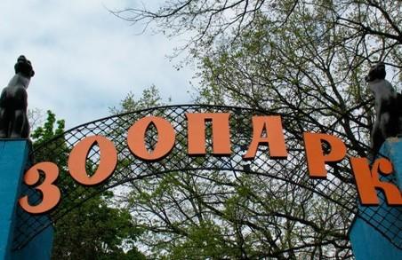 Проект реконструкції Харківського зоопарку винесуть на суд європейців