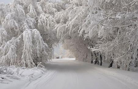 Зима 2016-2017 в Україні: харківці мають підготуватися до різких змін. Температур