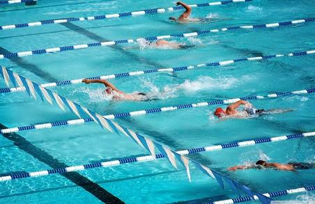 Українськими плавцями були здобуті п'ять медалей Чемпіонату світу