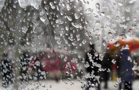 Синоптики попереджають харків'ян про шквальний вітер