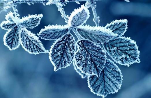 Прогноз погоди на 4 грудня 2016 року
