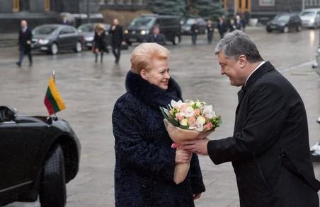 Візит Далі Грібаускайте в Україну: сказала правду – і чим усе завершилося (всі подробиці)
