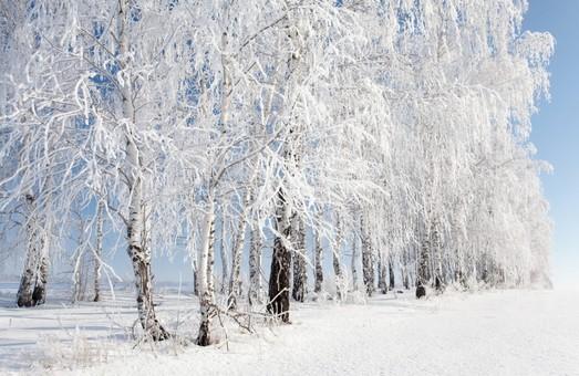 Прогноз погоди на 17 грудня 2016 року