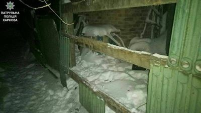 """""""Трудовий тиждень"""" злодії у Харкові почали з приватних домоволодінь"""