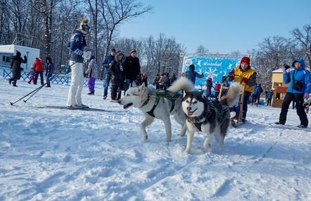 «Winter Fest» пройде на лижній базі «Темп» у Лісопарку