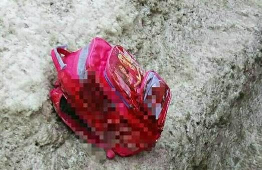 Насмерть збито 8-річну школьницю. З місця події водій не тікав/ Подробиці