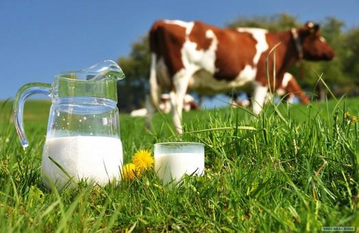 Масло, йогурт і молоко подорожчають