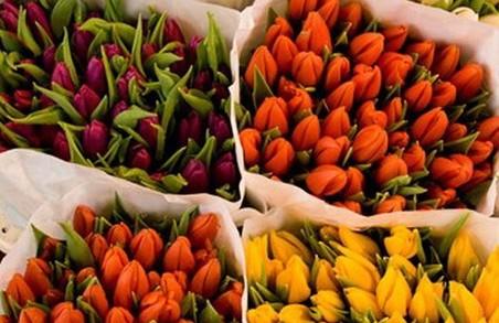 Хлопці вирішили, що напередодні св.Валентина квіти для них безкоштовні
