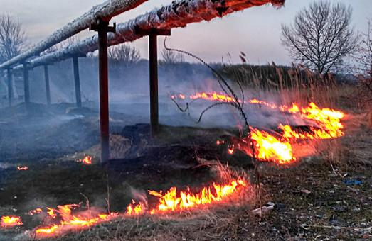 Підпал в Журавлівському гідропарку / Фото