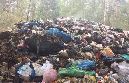Мерів міст звільнятимуть за «сміття Садового»