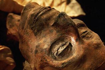 В Києві знайдено справжню давньоєгипетську мумію