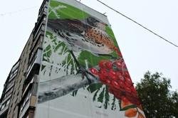 Скоро вулиці заграють новими барвами: у Харкові стартував «Mural Fest 2017»
