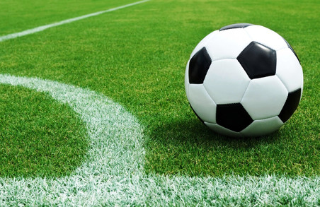 Світлична та Павелко мають намір провести матч Україна-Туреччина в Харкові