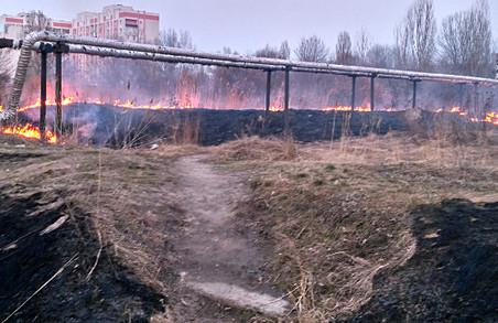 Усі служби повинні приділити увагу протипожежній безпеці в лісах - Світлична