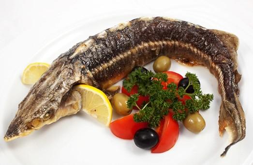 Де вільним українцям можна добре наловити риби