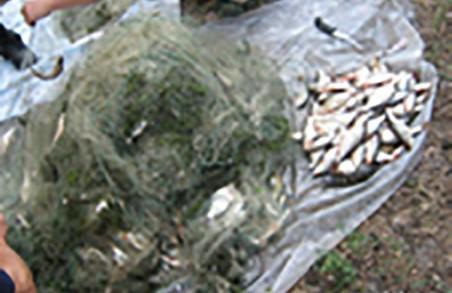 """""""Вільного рибалку"""" спіймали на Червоонооскільському водосховищі"""
