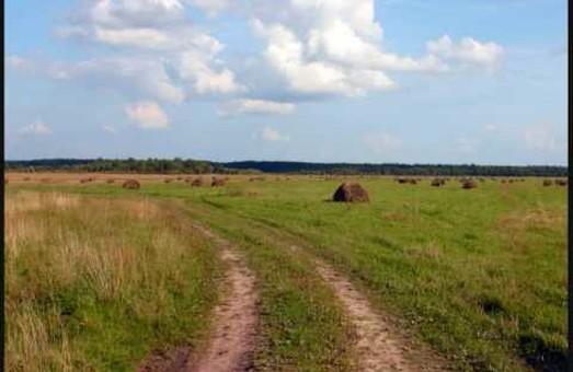 Проблема розпаювання залишається актуальною по районах Харківщини