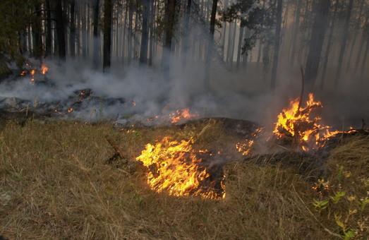 Харківські рятувальники ліквідували 16 пожеж в екосистемах