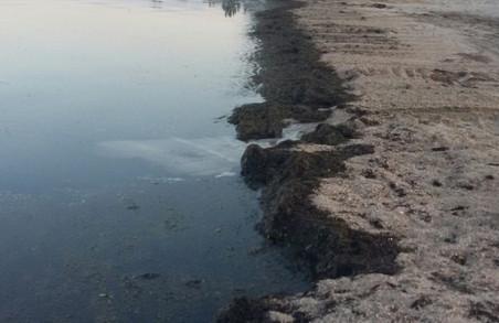 Які пляжі «забракувало» Міністерство охорони  здоров'я?