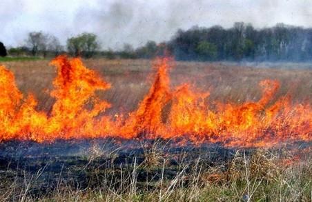 Пожежі на відкритих територіях сильно почастішали