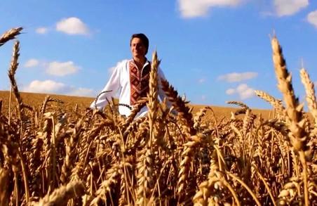 Фермер самовільно засіяв пшеницею чуже поле