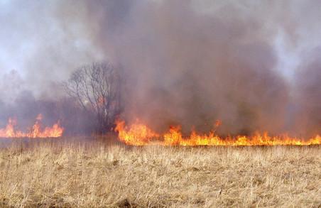У Харківській області зберігається висока пожежна небезпека