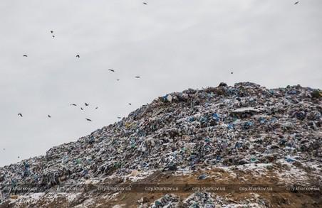 Кабмін підтримав Світличну у будівництві сміттєпереробного заводу у Дергачах