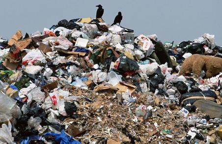 Українцям сподобалося інформувати владу про нелегальні сміттєзвалища