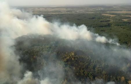 Пожежники рятують три населених пункти від наближення лісової пожежі/ Фото, Доповнено