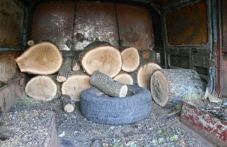 """У Міловому затримано автівку з """"лівою"""" деревиною"""