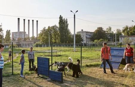 Харківським собакам вже є, де гуляти