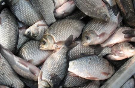 Українцям знову заборонили ловити рибу