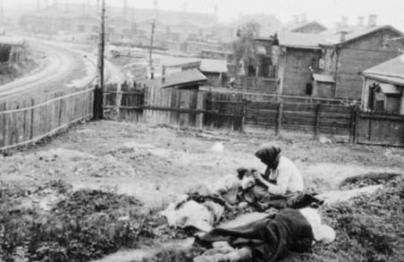 Голодний геноцид став першим кроком на шляху зумисного винищення українства – Світлична