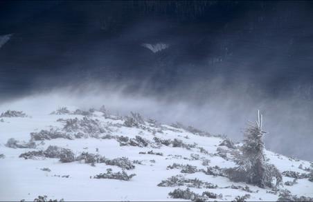 Синоптики попереджають мешканців Харківщини про ускладнення погодних умов