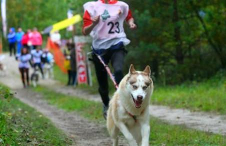 У Харкові намічається забіг з собаками на рекорд