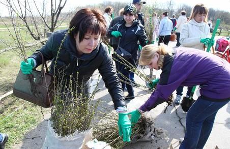 Сьогодні на Харківщині мать ліквідувати 700 звалищ і висадити 20 тисяч дерев