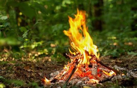 Рятувальники попереджають харків'ян про найвищий рівень пожежної небезпеки