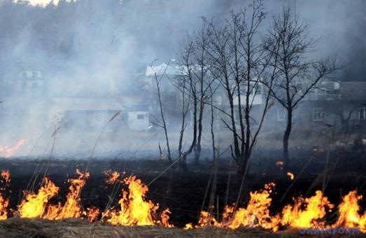 За останній тиждень на Харківщині сталося близько 200 пожеж