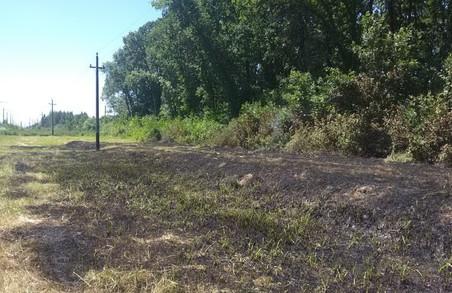 На Харківщині тільки за минулу добу було зафіксовано 21 загоряння сухостою та сміття