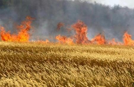 Рятувальники закликали харків'ян дотримуватися правили пожежної безпеки під час жнив