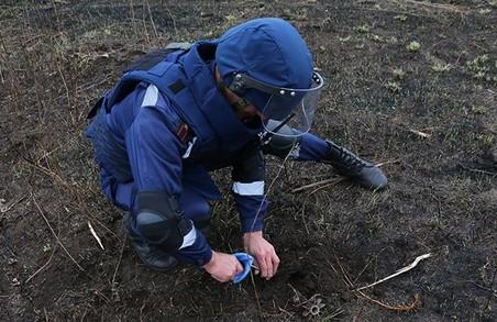 На Харківщині знайшли артилерійські снаряди часів Другої світової