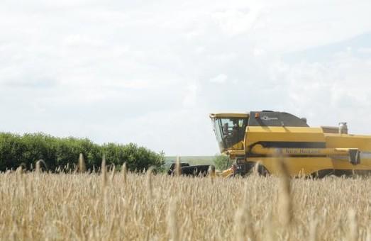 На Харківщині розпочався збір ранніх зернових