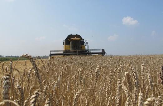 Світлична привітала хліборобів Харківщини з першим мільйоном тонн зерна нового врожаю