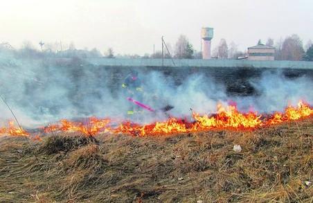 В харківських екосистемах не вщухають пожежі