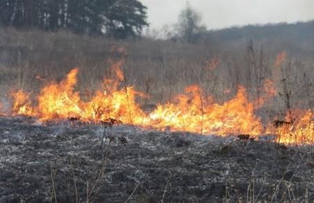 За добу на природних екосистемах Харківщини сталося 64 пожежі