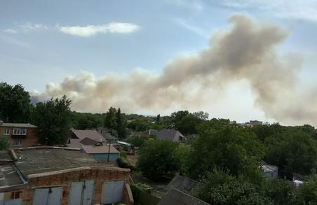 Лісова пожежа на Харківщині була локалізована